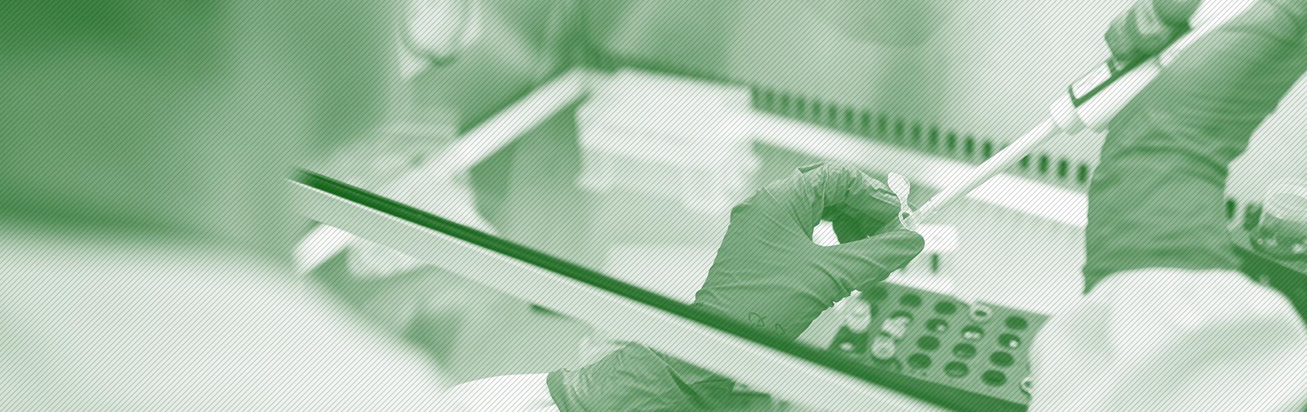 imagem com filtro verde de pesquisador manipulando material de laboratório