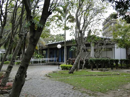 BEE - Biblioteca da Escola de Engenharia e do Instituto de Computação