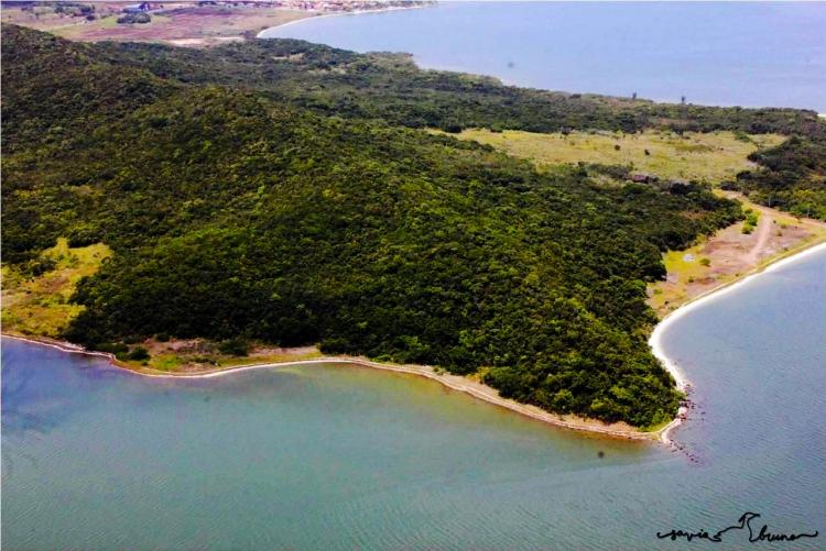 praias e mata em redor vistas de cima