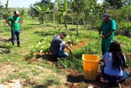 Funcionários da jardinagem, estudantes e docentes na horta em Pádua