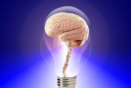 Imagem ilustrativa sobre inteligência