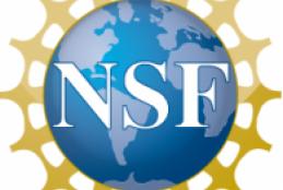 logomarca NSF