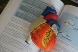 Protótipo de coração tridimensional e colorido, em cima de um livro aberto
