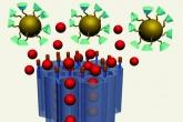 Nanoválvula (em azul) libera o fármaco (bolas vermelhas) nas 'portas' (esferas douradas com cones verdes) - Reprodução de artigo