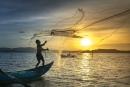 pescador em um barco no mar jogando uma rede de pesca na água