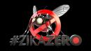 logotipo zikazero